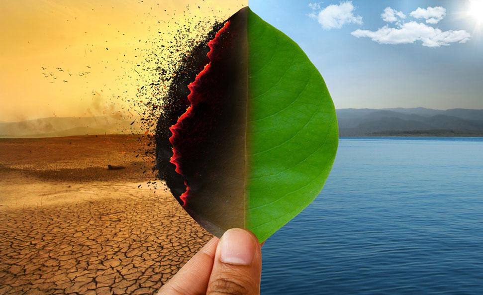 कार्बन व्यापारको आम्दानी ग्यास उत्सर्जन नहुने वैकल्पिक मार्गमा लगानी
